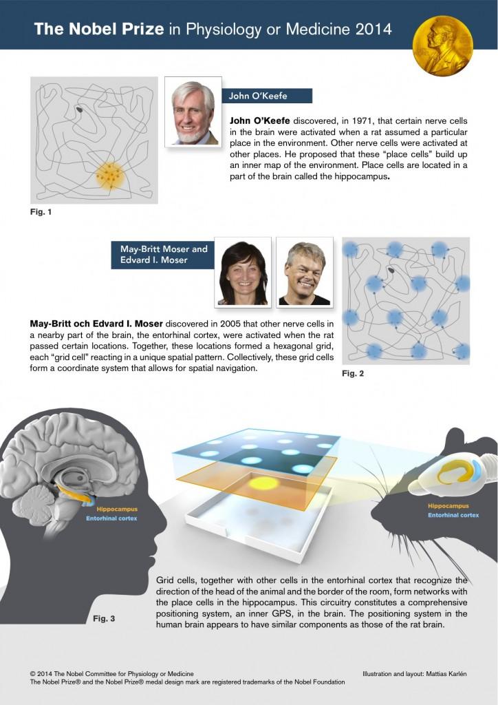 Nobel Prize for P/M 2014