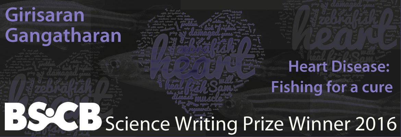 writingprizebanner2016